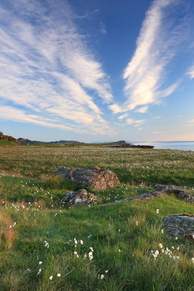 02D-0335 Cotton Grass eriophorum angustifolium and the View Over Staffin Bay Trotternish Peninsula Isle of Skye Scotland UK