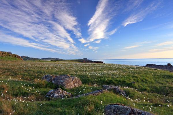 02D-0338 Cotton Grass eriophorum angustifolium and the View Over Staffin Bay Trotternish Peninsula Isle of Skye Scotland