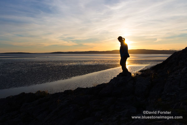 02M-2974 Walking Along the Silverdale Coast at Sunset, Morecambe Bay, Lancashire