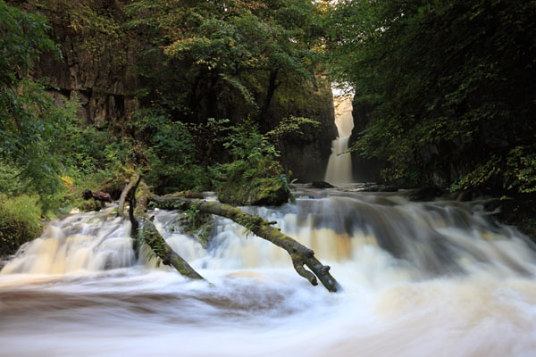 03D-7163 Catrigg Force Waterfall in Early Autumn Stainforth Ribblesdale Yorkshire Dales UK