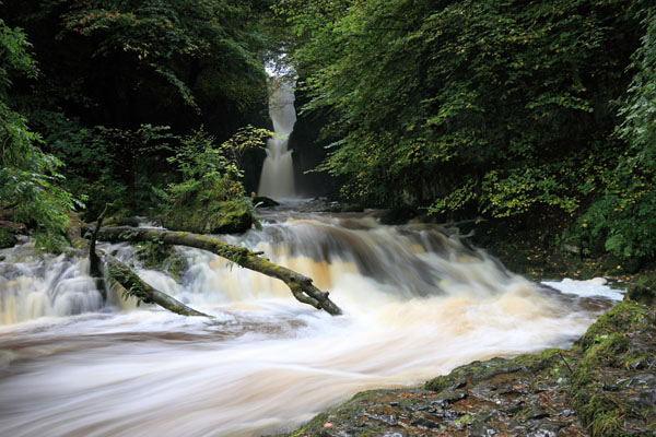 03D-7203 Catrigg Force Waterfall in Early Autumn Stainforth Ribblesdale Yorkshire Dales UK