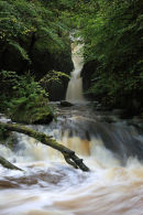 03D-7246 Catrigg Force Waterfall in Early Autumn Stainforth Ribblesdale Yorkshire Dales UK