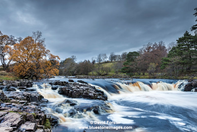 03M-0133 Autumn Colours at Low Force Waterfall on the River Tees, Bowlees, County Durham. UK