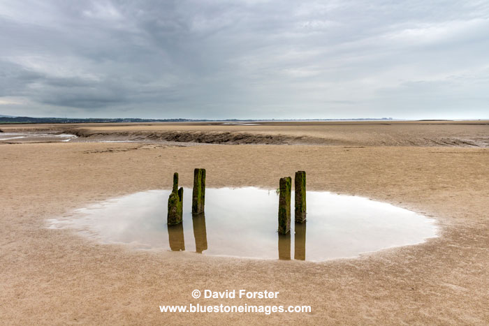 03M-6988a Morecambe Bay from Jenny Browns Point Silverdale Lancashire UK