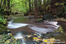 03M-9096 Summerhill Force in Autumn Bowlees Teesdale County Durham UK