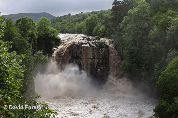 05D-1687 High Force Waterfall on the River Tees After Thunderstorms and Heavy Rain Caused Flash Flooding on 28.06.12