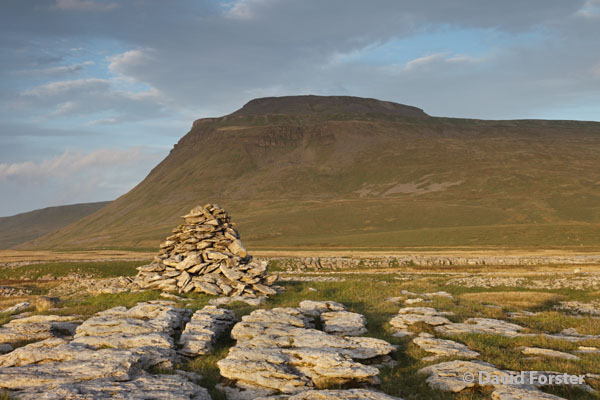 05D-5441 Ingleborough From White Scars in Late Evening Light Yorkshire Dales National Park UK