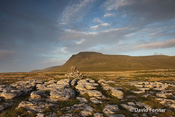 05D-5448 Ingleborough From White Scars in Late Evening Light Yorkshire Dales National Park UK