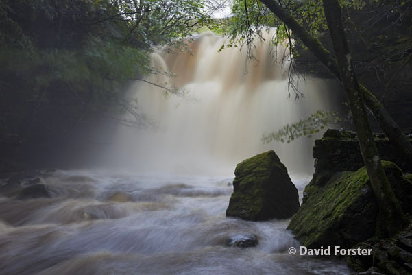 05D-6175 Summerhill Force (Gibson's Cave) in Flood Conditions Caused by Heavy Rain on the 24th and 25th September 2012 Bowlees Upper Teesdale County Durham