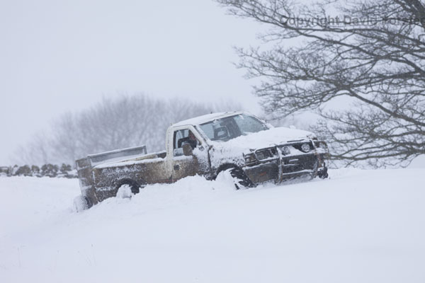 06D-2682 Farmer driving through deep snow to check on his sheep.