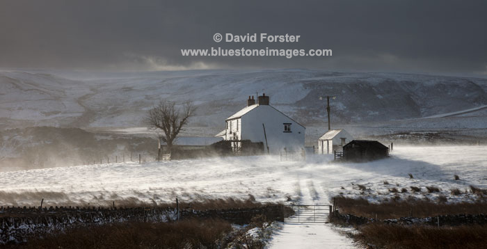 06D-8056 Snow Blowing Around Birk Rigg Farm with Cronkley Fell in the Background Forest in Teesdale, County Durham UK