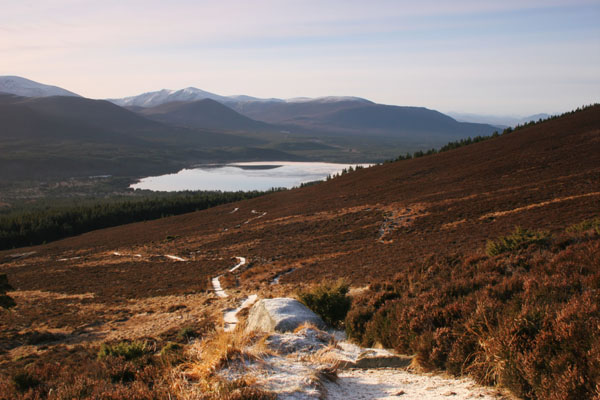 07-4679 Loch Morlich from the Slopes of Meall a' Bhuachaille Cairngorms Scotland