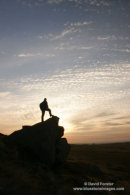 9787 Hill Walker at Sunrise, Goldsborough Crag, Teesdale, County Durham