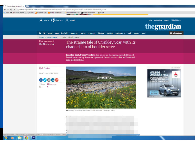 The Guardian Image Use