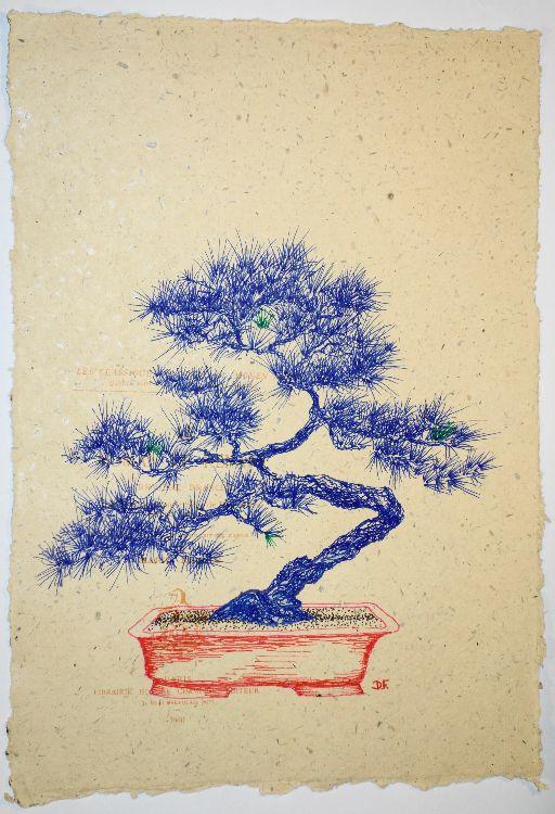 Blue-Bonsai