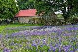 Emsworthy barn2
