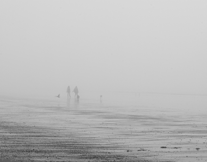 Walkers in the Mist 2