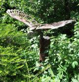 Bronze Owl 2015