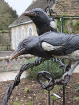 Magpies - two for joy