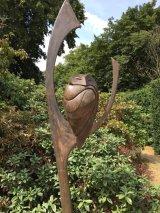 Owl at Doddington Hall