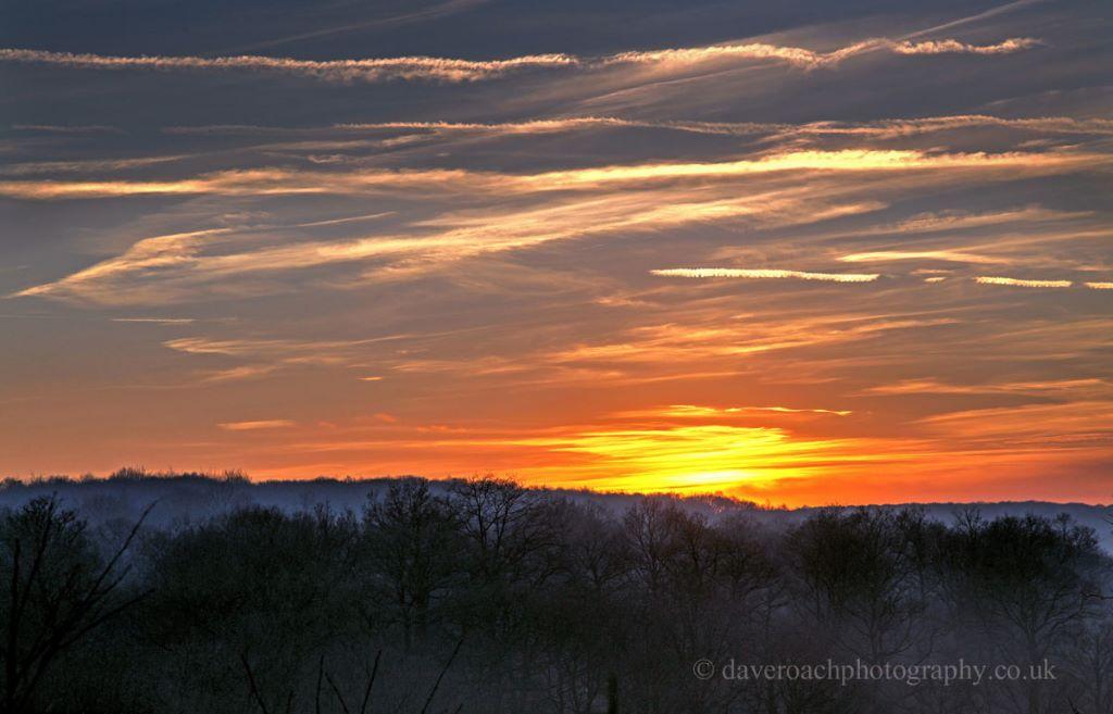 Mist rising from the Wyre Forest at sunset