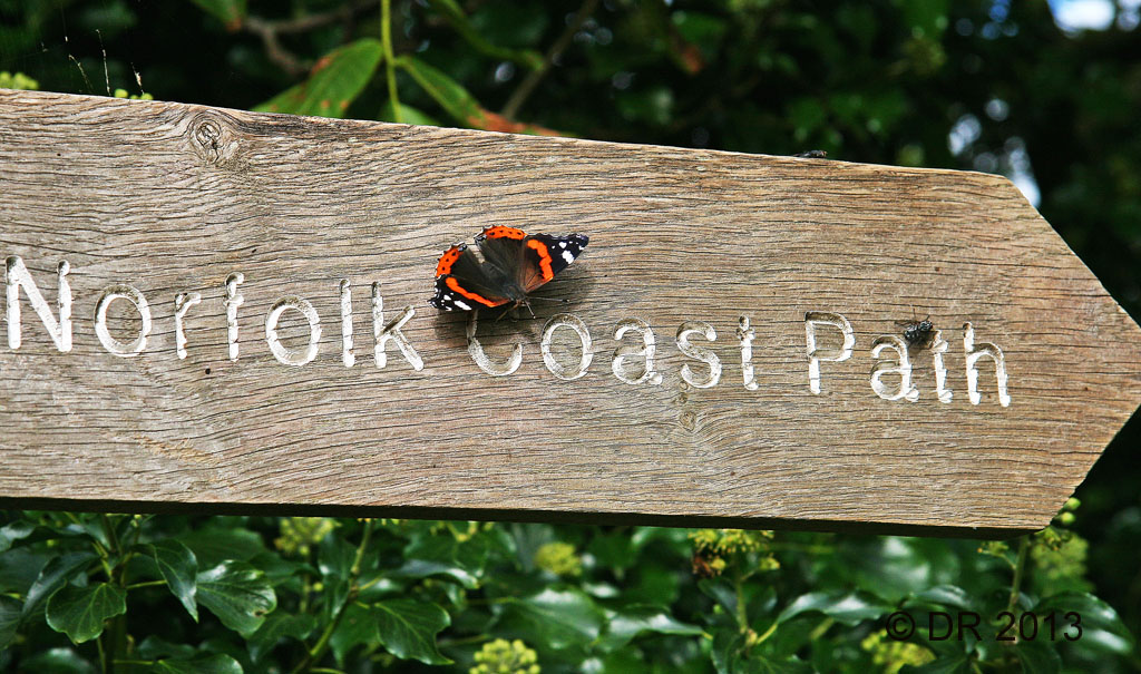 Images from the North Norfolk Coast