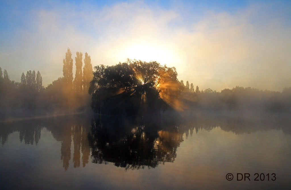 (1) Sunrise in the Brenne National Park, France
