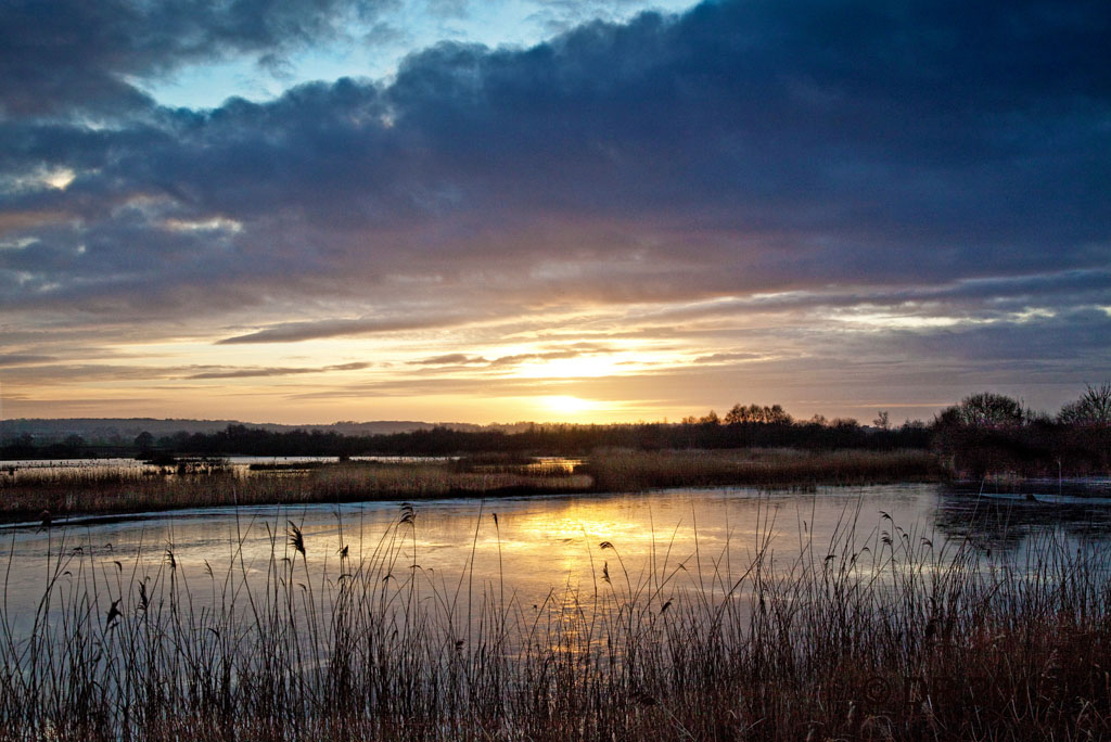 Sunset in the Somerset Levels (3)
