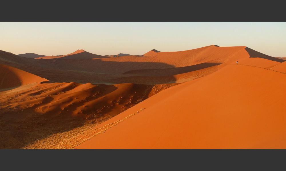Sunrise stroll in the Namib