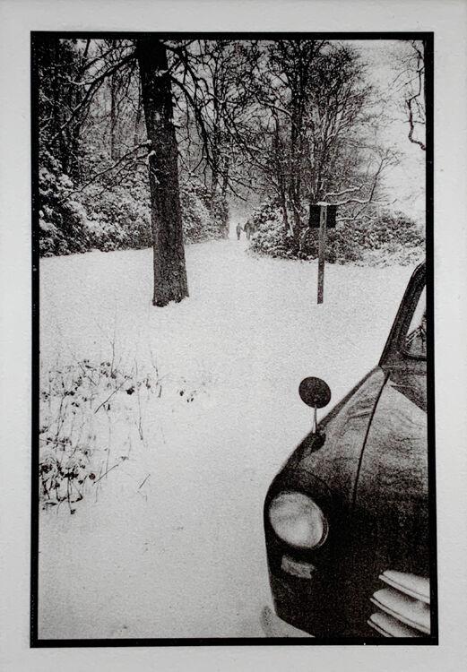 Winter - Walk in the Woods
