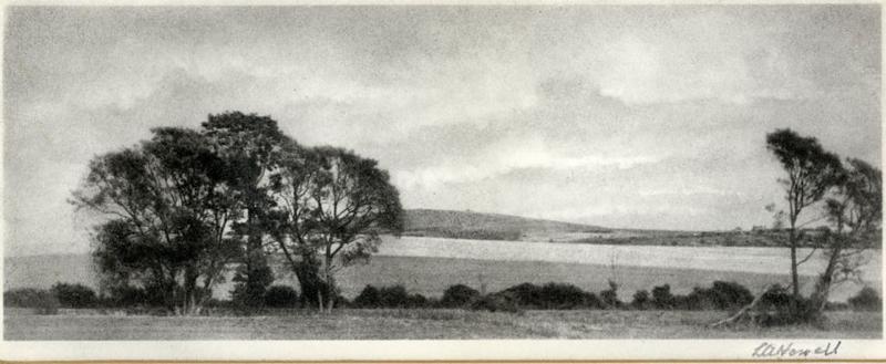 West Sussex Landscape