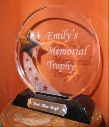 Emily's Memorial Trophy for best new trade stand, Great Dorset Steam Fair 2014