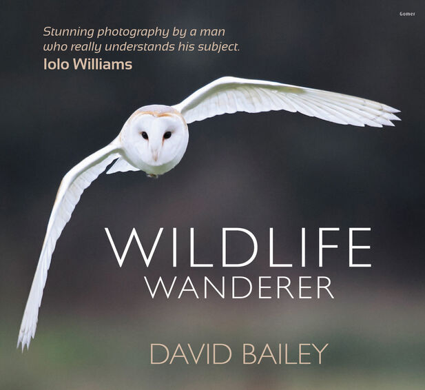 My first book Wildlife Wanderer is signed and only available in limited numbers. £19.99 inc P&P. Please click on thumbnail to order..