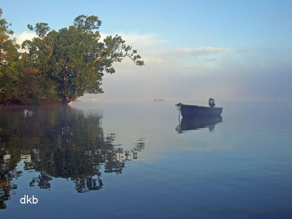 Early morning Coombe Cellars Creek, Teign Estuary.