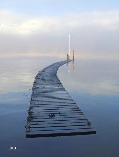 Foggy dawn Coombe Cellars, Teign Estuary