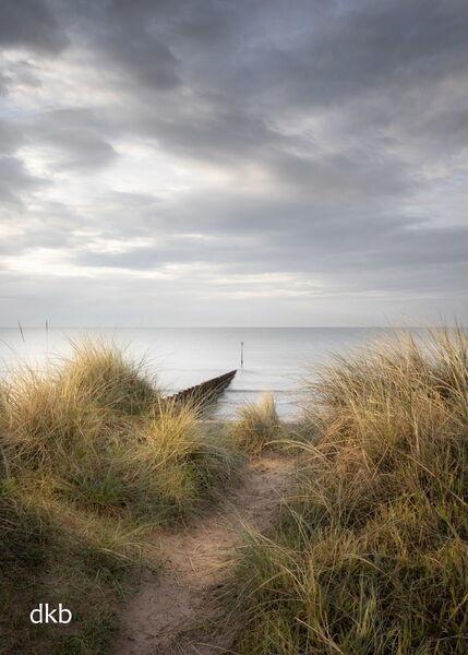 Warm light on the dunes - Dawlish Warren, South Devon