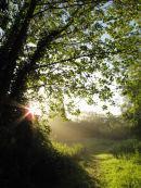 Early morning at Upton!