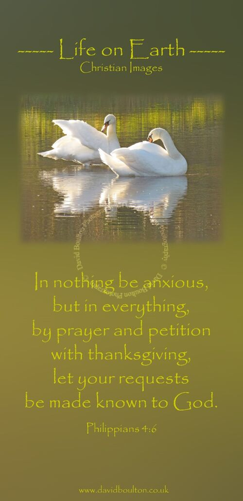 In nothing be anxious, but in everything, by prayer and petition with thanksgiving, let your requests be made known to God. (Philippians 4:6 WEB)