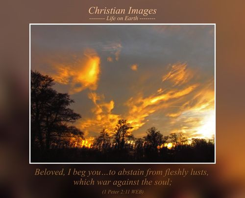 Beloved, I beg you…to abstain from fleshly lusts, which war against the soul; (1 Peter 2:11 WEB)