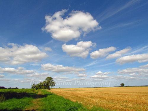 Norfolk - The Weavers Way