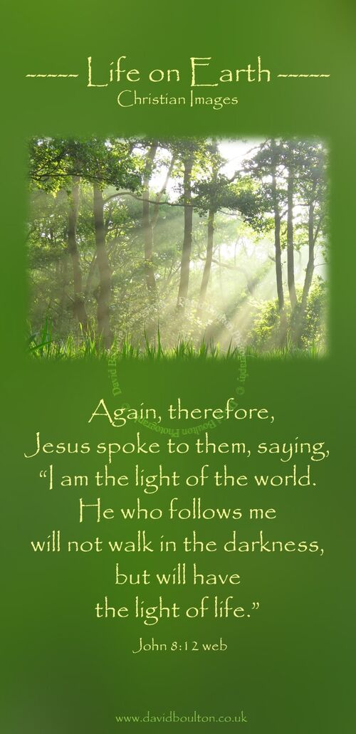 """Again, therefore, Jesus spoke to them, saying, """"I am the light of the world. He who follows me will not walk in the darkness, but will have the light of life."""" (John 8:12 WEB)"""
