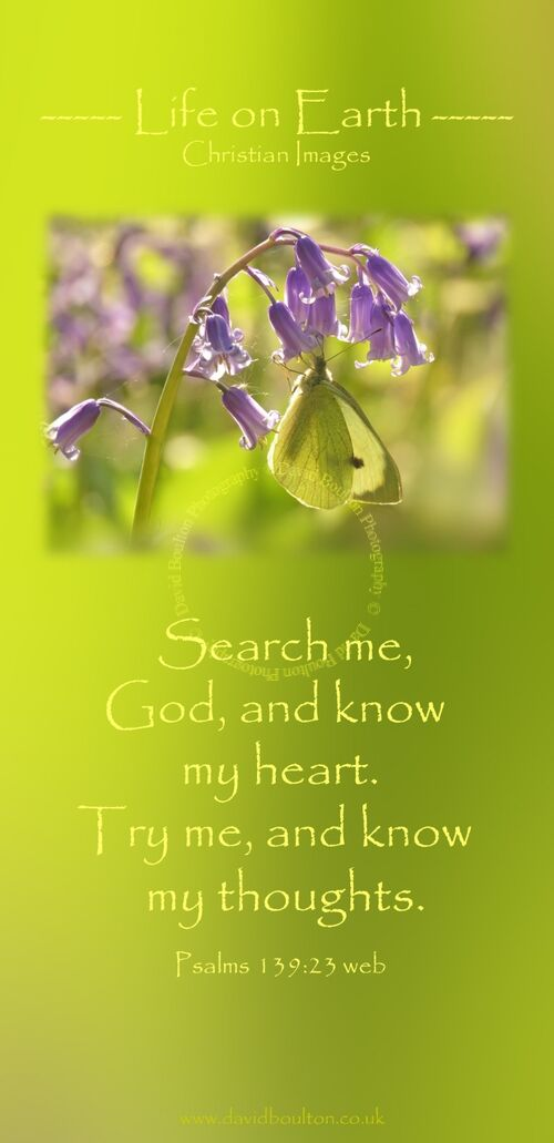 Search me, God, and know my heart. Try me, and know my thoughts. (Psalms 139:23 WEB)