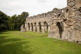 Buildwas Abbey 1