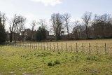 Attingham Park 4