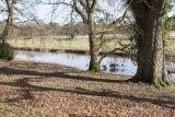 Attingham Park 8