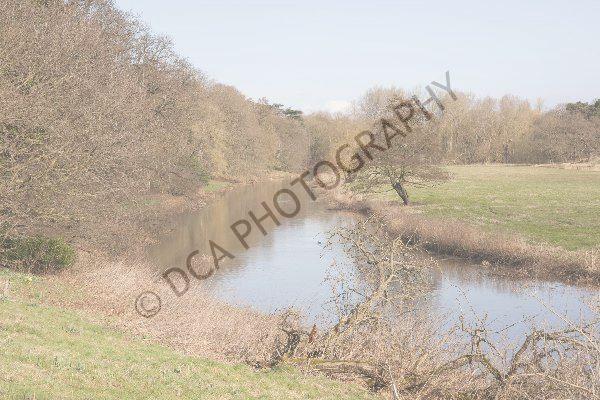 Attingham Park (3)