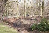 Attingham Park 18