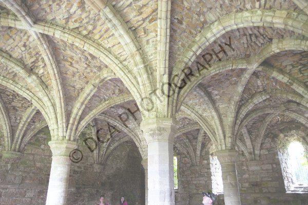 Buildwas Abbey (11)
