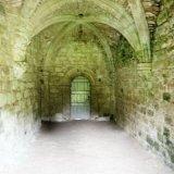 Buildwas Abbey (15)