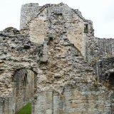 Buildwas Abbey (23)